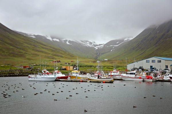 Siglufjörður, Islandia