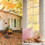 Mi casa en otoño