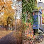 Montreal en otoño